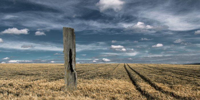 GOP House And Senate Rally Around Rotting Fence Post In A Field