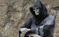 Grim Reaper Presses Pause – Thinking Over This Whole Halloween Thing
