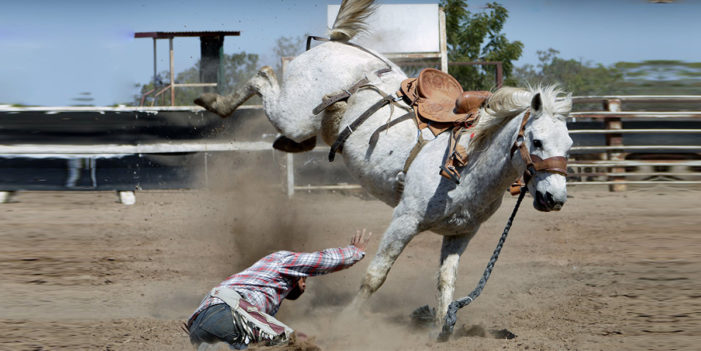 Horse Tells Cowboy Who Likes Trump To Get The F*** Off