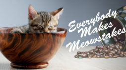 """Bill Cosby Shares Inspirational Kitten Post With Harvey Weinstein: """"Everybody Makes Meowstakes"""""""