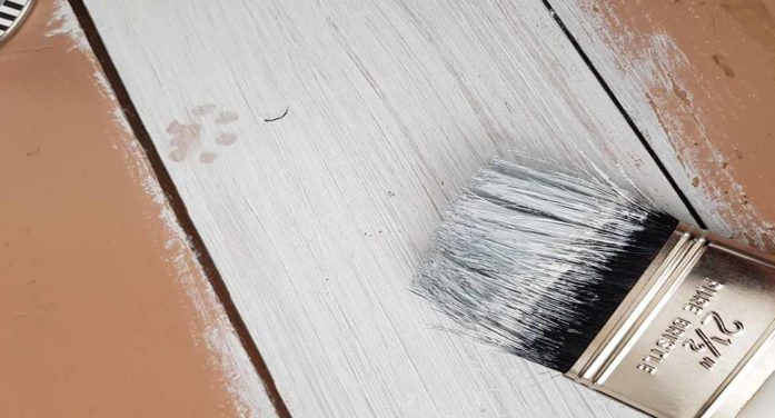 Report: This Photo Of Paint Drying Will Shock You
