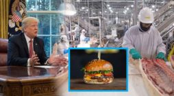 President Orders Hamburger Factories To Remain Open
