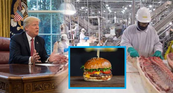 President Orders Hamburger Factories To Stay Open